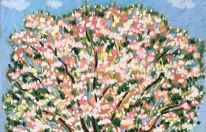 1blossoming-tree